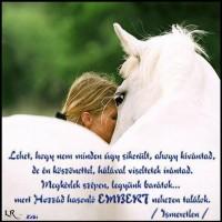 régi barátság idézetek CicaNevelde   Idézetek 2.rész Barátok